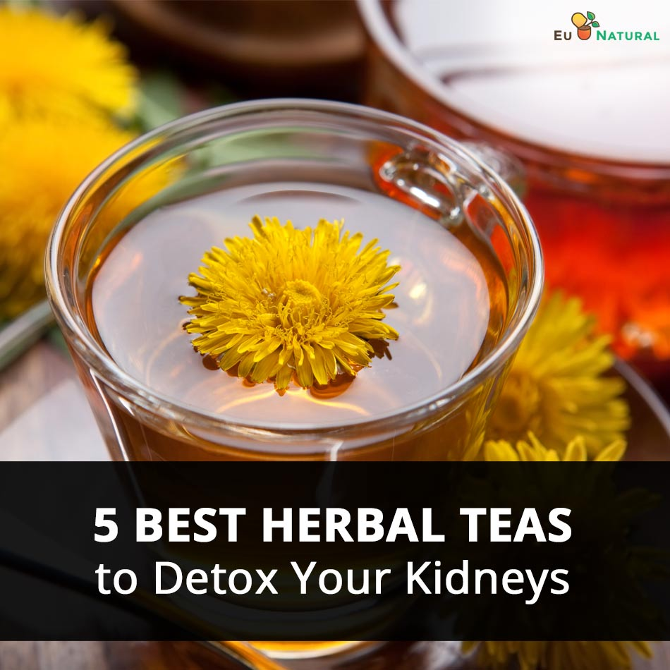 5 Best Herbal Teas to Detox Your Kidneys